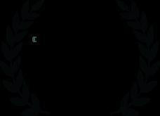 Best Sound Design Nomination Post-Production services